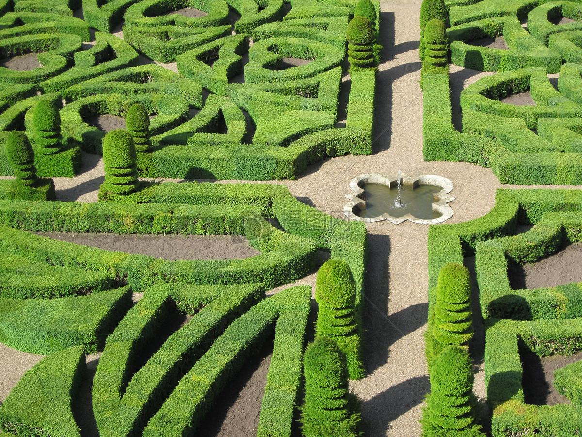 阳光下的植物迷宫