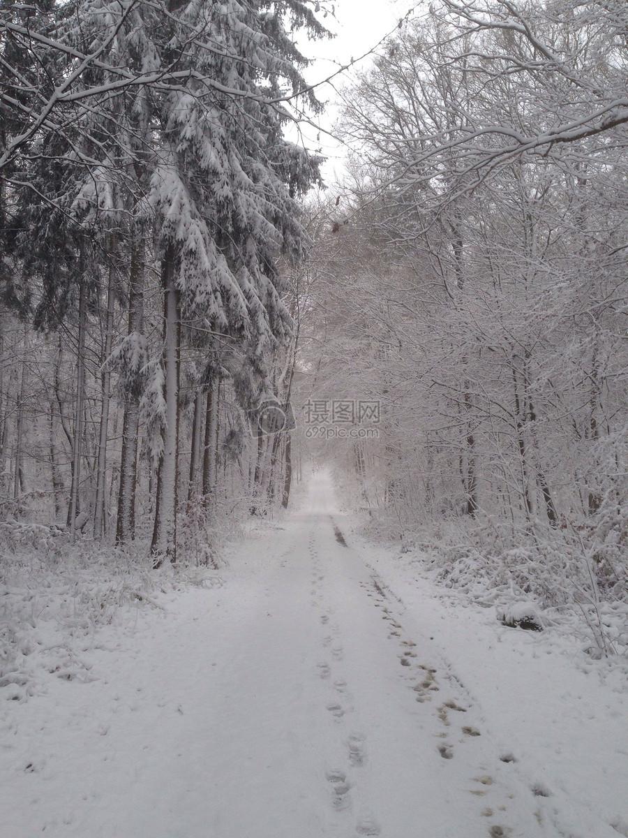 冬天自然/风景免费下载_格式:jpg_大小:2448x3264像素