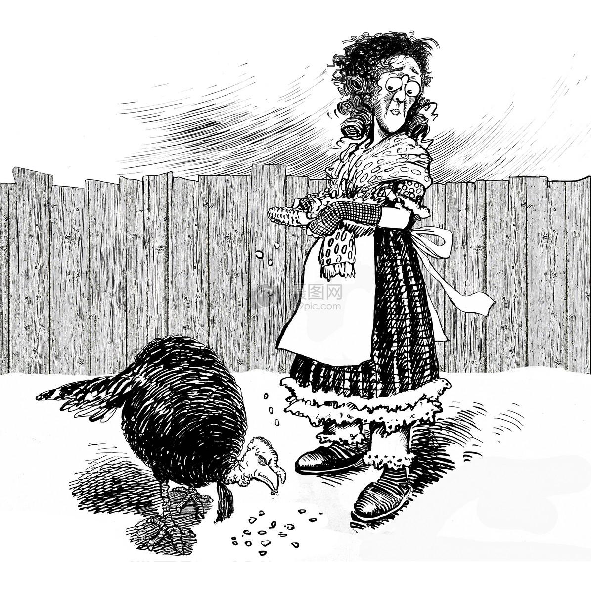 喂火鸡的女人简笔画